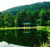 """""""The Pond"""" at our Wildwood School Summer Program Altamont Site"""