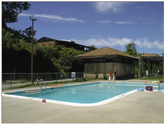 The Pool at our Altamont Site.